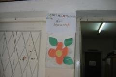 proyectos_escolares (14)